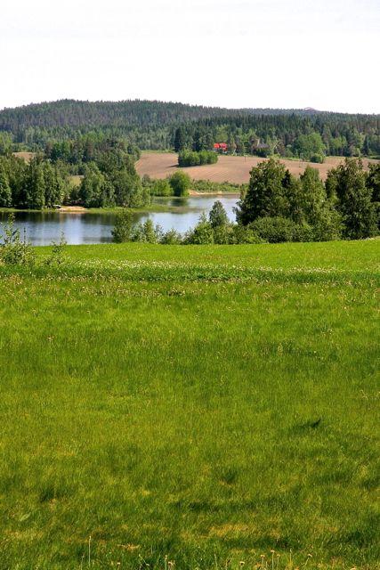 Suomelan järvimaisemaa. Kuva: MBody.info – Maria Svan